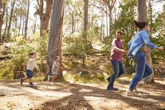 一起跑沿道路的家庭通过森林 库存照片