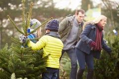 一起选择圣诞树的室外家庭 免版税库存图片