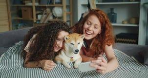 一起采取与逗人喜爱的狗的俏丽的女孩selfie使用在长沙发的智能手机 股票视频