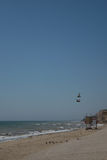 一起飞行的海景和两的鸠 免版税图库摄影