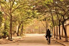 一辆人骑马自行车在一秋天天 免版税库存图片