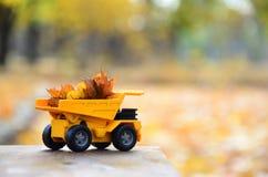 一辆小玩具黄色卡车用黄色下落的叶子装载 汽车站立木表面上反对背景模糊 图库摄影