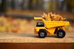 一辆小玩具黄色卡车用黄色下落的叶子装载 汽车站立木表面上反对背景模糊 免版税库存图片