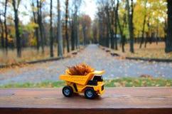 一辆小玩具黄色卡车用黄色下落的叶子装载 汽车站立木表面上反对背景模糊 库存照片