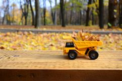 一辆小玩具黄色卡车用黄色下落的叶子装载 汽车站立木表面上反对背景模糊 免版税库存照片