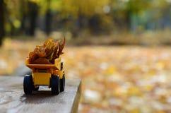一辆小玩具黄色卡车用黄色下落的叶子装载 汽车站立木表面上反对背景模糊 免版税图库摄影