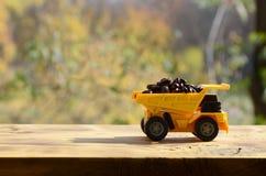 一辆小黄色玩具卡车用棕色咖啡豆装载 木表面上的一辆汽车反对秋天森林Extr背景  库存照片