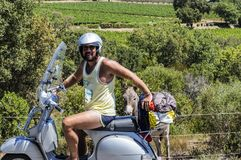 一辆滑行车的人在一头驴附近在普罗旺斯的葡萄园里在夏天 免版税库存图片