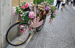 一辆特别自行车 免版税库存照片