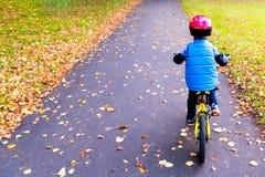 一辆男孩骑马自行车的顶上的看法有户外安全帽的在秋天公园 免版税库存图片