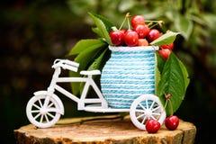 一辆白色自行车的照片用樱桃和叶子 免版税图库摄影