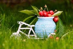 一辆白色自行车的照片用樱桃和叶子 免版税库存图片