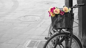 一辆老自行车的有选择性的不饱和化有花的在bas 免版税库存图片