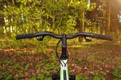 一辆自行车在反对绿叶、草和叶子背景的春天森林里  免版税库存照片