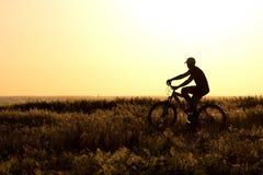 一辆自行车的年轻男孩在领域 库存图片
