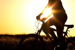 一辆自行车的年轻男孩在领域 免版税库存图片