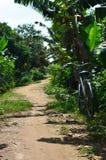 一辆被忘记的自行车在土道路离开 库存照片