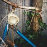 一辆被放弃的老葡萄酒生锈的自行车的细节有常春藤的在背景 库存图片