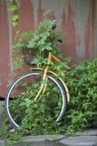 一辆被放弃的自行车 图库摄影