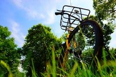 一辆黄色和黑自行车/自行车在绿草 图库摄影