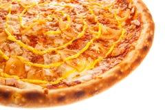 一部分的与鸡、蕃茄和乳酪的可口经典意大利薄饼 库存照片