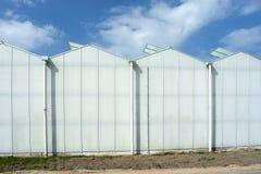 一部分的反对深蓝天的现代高温室 图库摄影