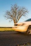 一部分的在行动的白色汽车 有一棵树的一条涂柏油的农村路在路旁 库存图片