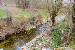 一部分的干燥河在春天期间的森林 免版税图库摄影