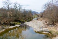 一部分的干燥河在春天期间的森林 库存照片