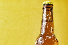 一部分的有冰的一非常冷的啤酒瓶 免版税库存图片