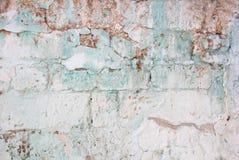 一部分的有削皮膏药的老浅绿色的砖墙和 免版税图库摄影