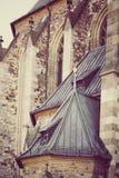 一部分的Chech共和国的布尔诺一个古老哥特式天主教会与葡萄酒治疗 库存图片
