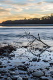 一部分看法的在河里面的一棵树在日落期间 免版税库存图片