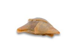 一酥脆samosa的特写镜头 库存图片