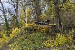 一门历史的大炮的纪念碑在华宝德国中 库存照片