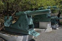 一门老大炮在博物馆 免版税库存图片