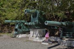 一门老大炮在博物馆 库存照片