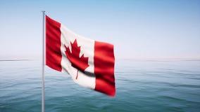 一面在风的大加拿大旗子打击在一云彩自由天 影视素材