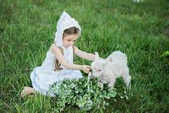 一顶白色礼服和帽子的一个牧羊人女孩喂养与圆白菜叶子的一只山羊 免版税库存照片