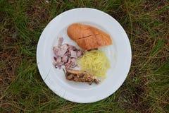 一顿典型的野餐膳食在显示乐趣和好时间的草地服务 库存图片