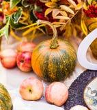 一顿晚餐的装饰的桌在秋天公园 免版税图库摄影