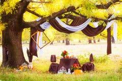 一顿浪漫晚餐的装饰的桌在橡木下在秋天公园 库存照片