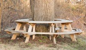 一顿野餐的好的地方在北部NY 免版税库存图片