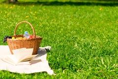 一顿野餐的篮子在草坪和自由空间 库存照片