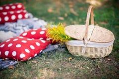 一顿野餐的篮子在草 库存图片