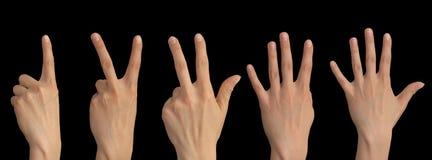 一,两,三,四,在一只手上的五个手指在黑背景 免版税库存照片