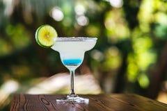 一份冷的饮料在热带 库存图片