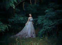 一件华美的长的礼服的美丽的女孩,在树中的步行 库存图片