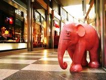 一头大象在屋子里 免版税库存图片