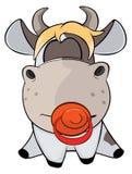 一头小的母牛 动画片 库存图片